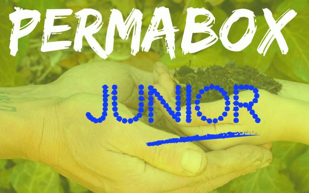 PERMA BOX – Junior